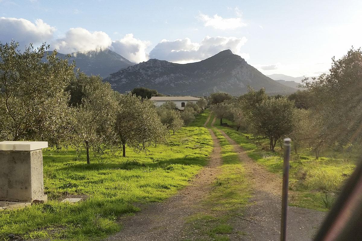 Bagno Lilla E Rosa : Sardinien ferienhaus am meer und strand von privat alleinlage
