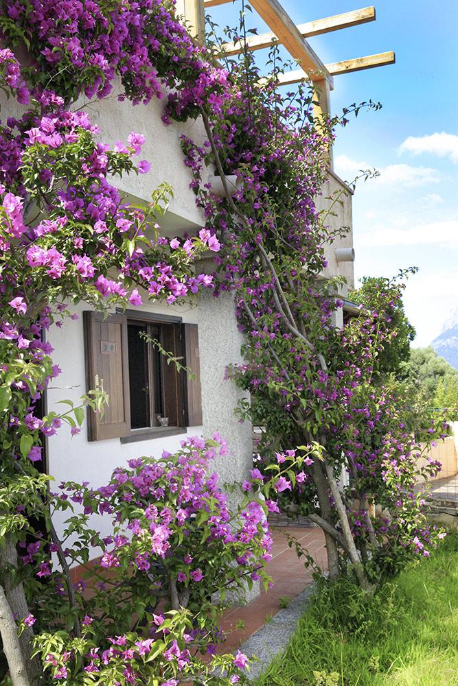 sardinien villa ferienhaus am meer komfortable wohnung 4. Black Bedroom Furniture Sets. Home Design Ideas
