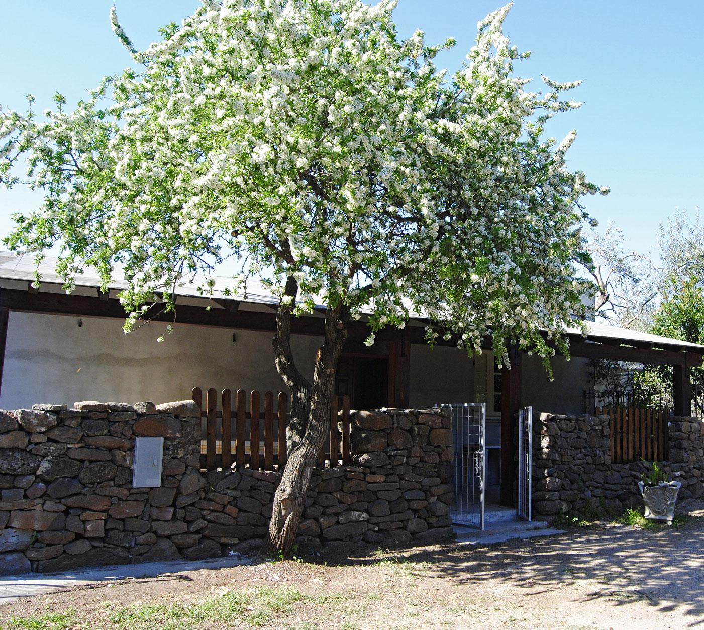 Sardinien ferienhaus am strand 200 meter casa pinuccio for Haus sardinien