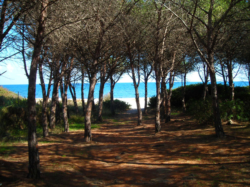 Sardinien ferienhaus am meer casa demelas bei posada for Sardinien ferienhaus am meer