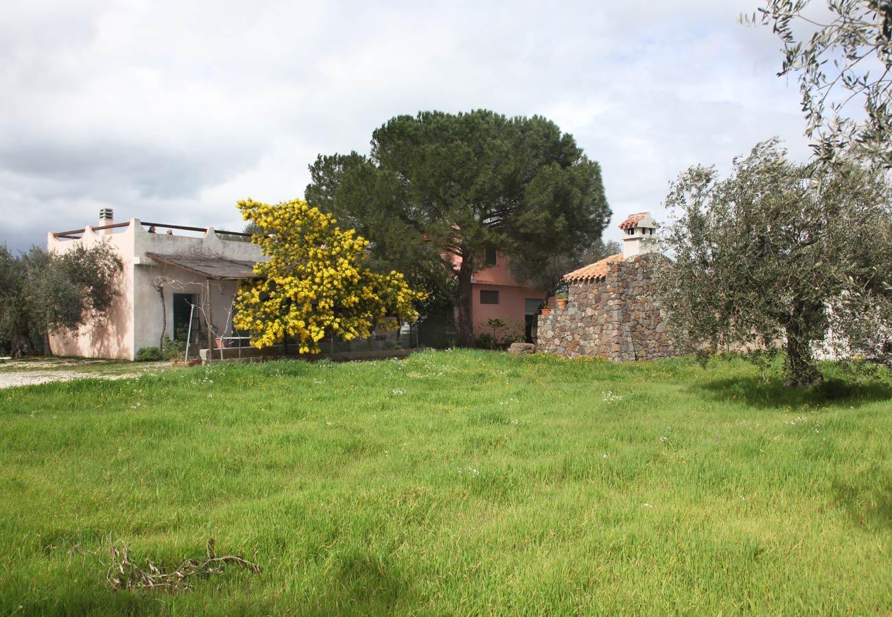 Sardinien ferienhaus in naturpanorama von privat for Haus sardinien